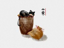 节气小寒狸猫水缸手绘插画