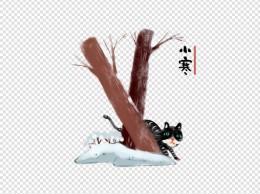 节气小寒狸猫大雪手绘插画