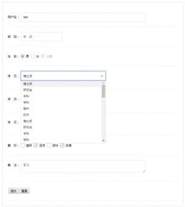 jQuery form表单美化实例代码