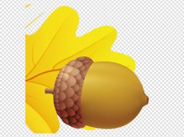 Acorn PNG 橡子